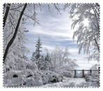 Winter006