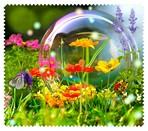 Spring012