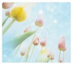 Spring022