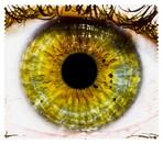 Eyes001