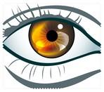 Eyes018